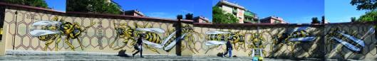Nido di Vespe - Lucamaleonte - Quadraro - Roma
